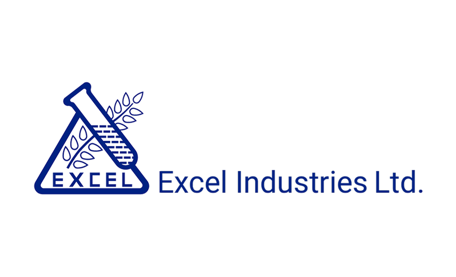 Deep Analysis Of Excel Industries Share Price And TradingView